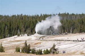 Geyser -- Yellowstone National Park