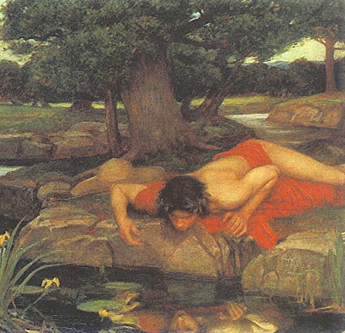 More Interesting Than Food Narcissus >> Narcissus | Tom Reeder's Blog